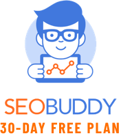 SEO Buddy Checklist Web Application